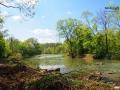 Rzeka Osława w WYSOCZANACH - tu wychodzą najpiękniejsze zdjęcia z końmi w głębokiej wodzie...