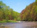 Rzeka OSŁAWA stanowiąca granicę między Bieszczadami, a Beskidem Niskim.