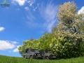 Wiosna w Bieszczadach na ziemi i niebie...