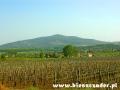 Góra Tokaj i tysiące winorośli podziwianych z okien autokaru w drodze z basenów na degustację win.