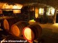 Wnętrze piwnicy w Hercegut oraz zdjęcia kiścia winogron