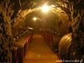 Degustacje win tokajskich realizujemy wyłącznie w piwnicach z leżakującym w beczkach winem.
