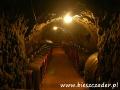 Winnice Podkarpacia i w Bieszczadach 1