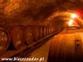 Piwnica z dojrzewającymi winami z Brekova