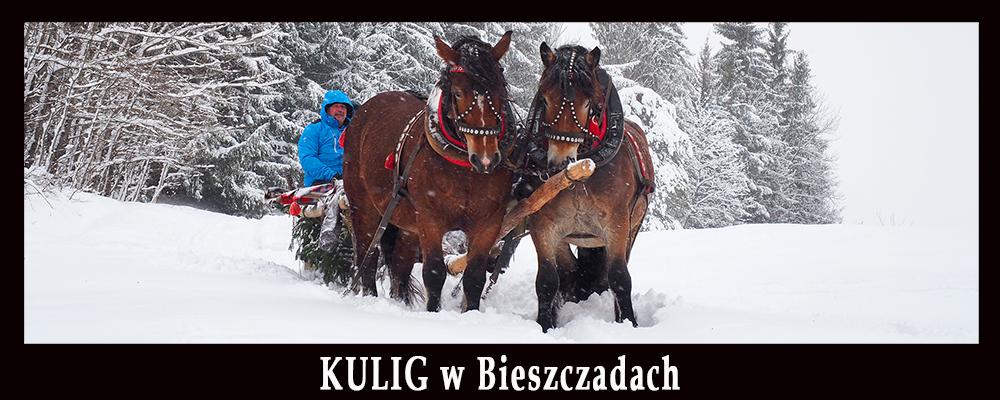Najlepszy KULIG w Bieszczadach na najdłuższej trasie na oryginalnych saniach lasowych.