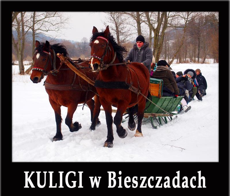 KULIGI w Bieszczadach oraz różne atrakcje na śniegu