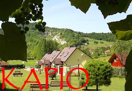KAPIO polecane noclegi w domkach i agroturystyce w Bóbrce koło Soliny nad Zalewem Myczkowieckim