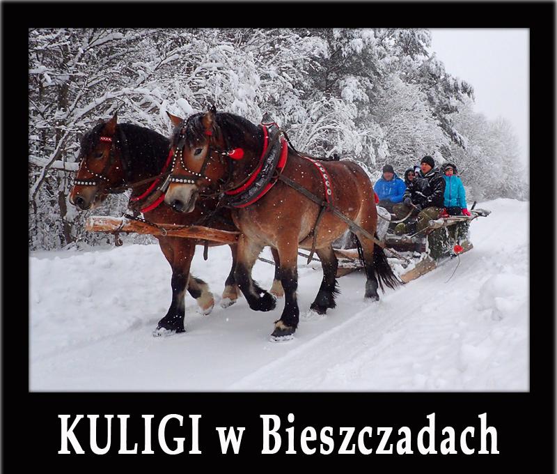 Bieszczady zimą - KULIG Z KOŃMI najdłuższą trasą!