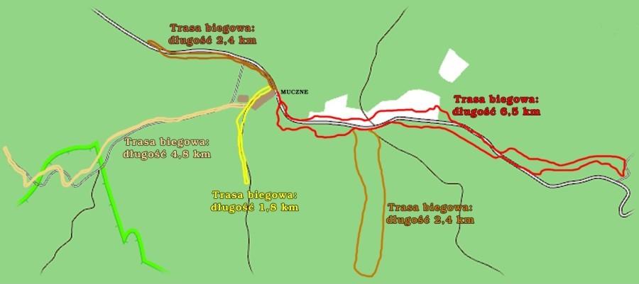 Trasy narciarstwa biegowego w Mucznem u podnóża najwyższych połonin bieszczadzkich.