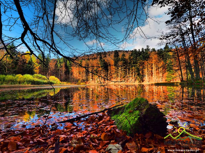 Jeziorka Duszatyńskie artystycznie jesienią w Bieszczadach ;-)