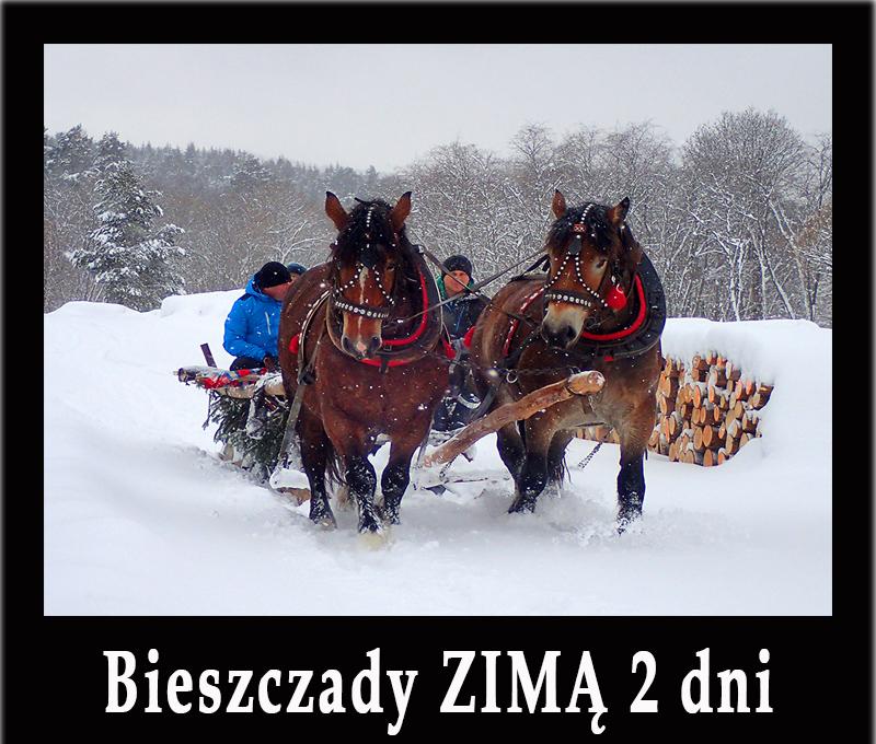 ZIMA w Bieszczadach w 2 dni - kuligi, wyciągi, wędrówki po górach na rakietach śnieżnych i inne atrakcje