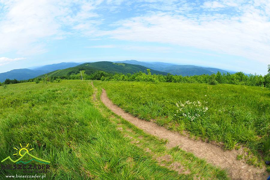 Widok ze szlaku tuż przy szczycie góry JASŁO 1153m w stronę Cisnej.