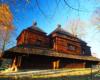 Podczas wycieczki jednodniowej Drezynami Po Bieszczadach odwiedzamy zagrodę żubrów w Mucznem.