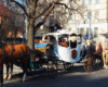 Po starówce Lwowa warto się przejechać karetą / powozem z koniem w czasie wolny. Życie we Lwowie płynie jakby wolniej, więc jadąc karetą możemy się poczuć jak byśmy przenieśli się w czasie...