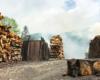 """""""Ja tu pilnuję"""" :-) Podczas wycieczki jednodniowej Traperska Przygoda zaglądamy na jeden z ostatnich wypałów węgla drzewnego w Bieszczadach."""