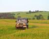 Na wyprawę UAZ-em możemy zabrać Waszego pieska. Widoki w pobliżu granicy między Bieszczadami, a Beskidem Niskim jak widać są piękne...