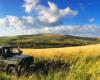 Najbardziej lubimy Wyprawy UAZ-ami jesienią. Oprócz kolorów na drzewach na łąkach rosną wysokie trawy... Zapraszamy jesienią na wycieczki w Bieszczady!