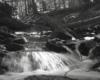 Jeden z potoków, które pokonujemy idąc czerwonym szlakiem do rezerwatu Zwiezło, w którym znajdują się legendarne Jeziorka Duszatyńskie. Na wycieczkę Traperska Przygoda w dzikie zakątki Bieszczad turystów zapraszamy od kwietnia do listopada.