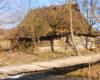 Oprócz atrakcji wymienionych na programie wycieczki jednodniowej Kolej Zakarpacka jadąc autokarem po Ukrainie Zachodniej zwracamy uwagę na budownictwo drewniane, a w tym m.in. stare chaty. Te ze strzechą na dachu coraz trudniej sfotografować...