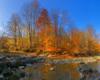 Progi skalne w rzece Osława - Duszatyn, rezerwat przyrody Łokieć. Tu warto odbyć wędrówką szlakiem wyznaczonym przez Biuro Podróży Bieszczader.