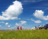 Przewodnicy wykonujący zdjęcia po opowiadaniu sympatycznej grupie na szczycie jednej z gór na granicy Bieszczad i Beskidu Niskiego, podczas wyprawy UAZ.