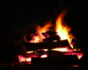 W cenie wycieczki jednodniowej Traperska Przygoda jest ognisko z kiełbaskami na leśnej polanie. Grupy bardzo często zamawiają dodatkowo muzyka, z którym śpiewamy przy ognisku...