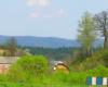 Kolejną atrakcją w programe wycieczki jednodniowej są największe w Polsce ruiny klasztorne karmelitów bosych w Zagórzu.