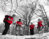 Przewodnickie koszulki w kolorze czerwonym Biura Podróży Bieszczader dominują w krajobrazie na szlaku prowadzącym na Pikuj :-)