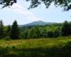 Wędrując na Pikuj z Biurem Podróży Bieszczader będziecie mieli zupełnie inne widoki - tylko nasi turyści wędrują tym szlakiem...
