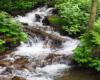 Jeden z licznych potoków na zboczach Pikuja. Idąc po szlaku wiemy gdzie są źródła i można sobie uzupełnić zapas wody.