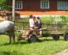 Rodzina ładnie ubrana i czekają na głowę rodziny by pojechać na nabożeństwo do cerkwi w niedzielę. Ten rodzaj transportu, czyli wóz i koń dominuje w bieszczadzkich dolinach po ukraińskiej stronie granicy państwa.