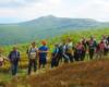 Grupa wychodząc na grań prowadzącą do Pikuja. To jest najpiękniejszy szlak prowadzący na najwyższy szczyt Bieszczad...