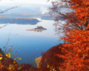 Wyspa Mała / Zajęcza na środku Zalewu Solińskiego podziwiana jesienią ze zboczy góry Jawor 714m. Obok tej wyspy przepływamy na rejsie statkiem na wycieczce jednodniowej.