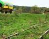 Wycieczka jednodniowa Traperska Przygoda odbywa się wzdłuż torów bieszczadzkiej kolejki wąskotorowej, która jeździła tu do prawie końca XX wieku, doworząc drewno do zakładów drzewnych w Rzepedzi.