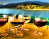 Wycieczka jednodniowa Wodami Rzeki San kończy się degustacją 5 gatunków win. Nie oszczędzamy na ilości wina. Wszystko odbywa się na rejsie statkiem po Zalewie Solińskim z opowieściami winiarza oraz przewodnika o Bieszczadach...