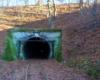 Najdłuższy tunel w Europie na kolejach wąskotorowych na trasie ciuchci Pogórzanin między Dynowem, a Przeworskiem. Jadąc na wycieczkę jednodniową z Biurem Podróży Bieszczader turyści wchodzą do wnętrza tunelu z przewodnikiem.
