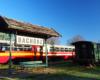 Na stacji kolejowej w Bachórzu jest mały skansen kolejki wąskotorowej pogórzanin. Tu też warto zjeźć podkarpackie potrawy regionalne w restauracji Semafor. Zacznijcie od proziaków...