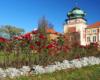 Zamek w Łańcucie otacza przepiękny park dworski, w którym warto sfotografować licznie posadzone kwiaty. Zamek w Łańcucie zwiedzamy z przewodnikiem z podziałem na mniejsze grupy turystów na wycieczce jednodniowej.