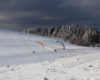 SnowGliding Bieszczady zima atrakcje wycieczki narty wyciągi