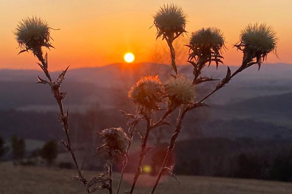 Niepowtarzalny zachód słońca w Bieszczadach - atrakcje wycieczki