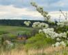 Wiosna w Morochowie z widokiem na drewnianą cerkiew z 1837 roku. Zdjęcie wykonaliśmy z góry Czekajka, skąd jest przepiękny widok na Bieszczady i Beskid Niski.