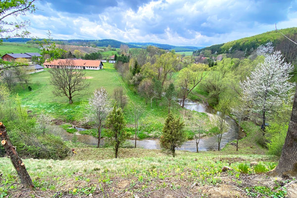 Punkt widokowy w Wysoczanach na granicy Bieszczad i Beskidu Niskiego odkrzaczony przez załogę Biura Podróży Bieszczader