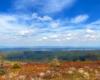Widok z Bukowego Berda w kierunku wschodnim, czyli w stronę Ukrainy. Kolory wiosną w Bieszczadzkim Parku Narodowym są cudowne...