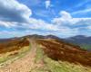 Zdjęcie szlaku na części Bukowego Berda w kierunku najwyższych szczytów Bieszczadzkich: Krzemienia, Halicza i Tarnicy, a wykonane podczas wycieczki jednodniowej po Bieszczadach.