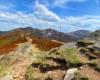 Wybierając się na wycieczkę jednodniową po górach Bieszczadzkiego Parku Narodowego zachęcamy wybrać wędrówkę z Mucznego na Bukowe Berdo z widokami na najwyższe szczyty Województwa Podkarpackiego.