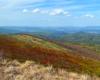 Widok z Bukowego Berda w stronę Mucznego, skąd wyszliśmy w ciągu godziny szlakiem turystycznym i mając widoki na najwyższe szczyty Bieszczad.