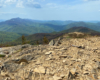 Kamienie i skały na szlaku prowadzącym przez Bukowe Berdo w Bieszczadzkim Parku Narodowym.