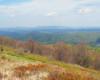 Kolory Bieszczad wiosną podziwiane tuż po wyjściu z lasu na szlaku prowadzącym z Mucznego na Bukowe Berdo. Warto wybrać się na wycieczkę jednodniową po Bieszczadzach o każdej porze roku. Ale wiosna i jesień są najbardziej kolorowe.