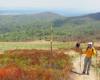 Szlak górski na Bukowym Berdzie po wyjściu z Mucznego w Bieszczadzki Park Narodowy.