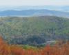 Widok z Bukowego Berda na Muczne, a kolory lasów wiosną są zaskakujące, dlatego zachęcamy do wycieczek jednodniowych po Bieszczadach o tej porze roku.